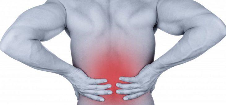 Exemple de prise en charge ostéopathique :La lombalgie d'origine viscérale